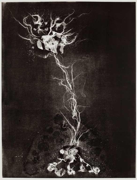 Fragility 3, Susan Aldworth  2009, monotype 65x50 cms
